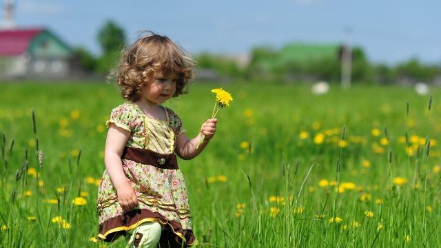 Ребенок на поле