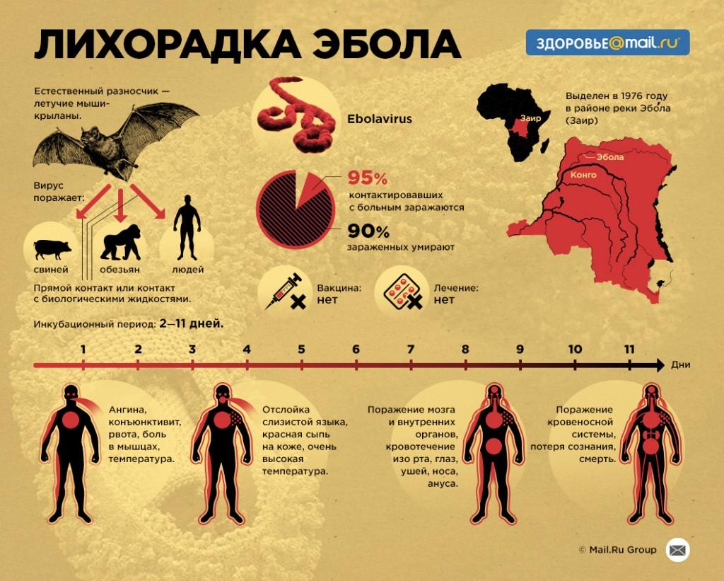 Эбола инфографика